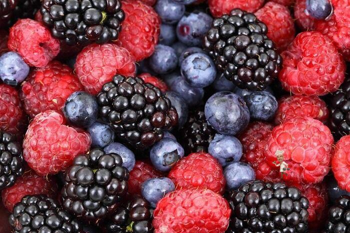 Berries to Improve Your Immunity System
