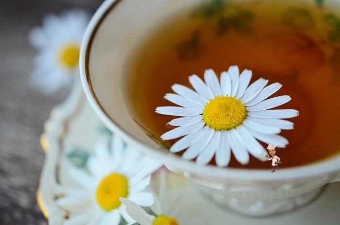 Chamomile Tea Anti-Stress Benefits