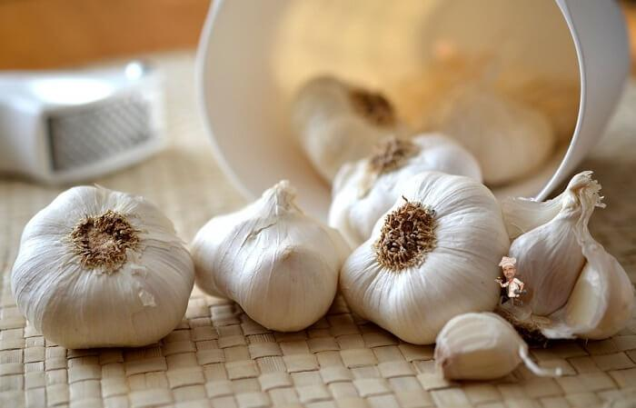 Garlic to Boost Your Immunity