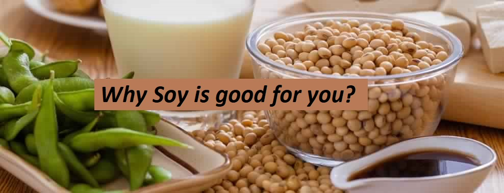 How good is Soy for you?