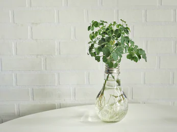 5 Do it yourself items for decorating your house from recycled materials