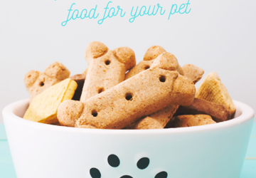 Right food for pets